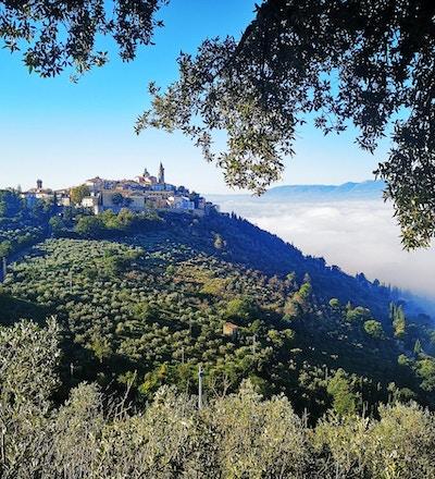 Utsikt mot liten by på bakketopp med vingårder og fjell i bakgrunnen.