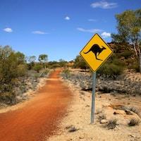 Se opp for kenguruer i veibanen!
