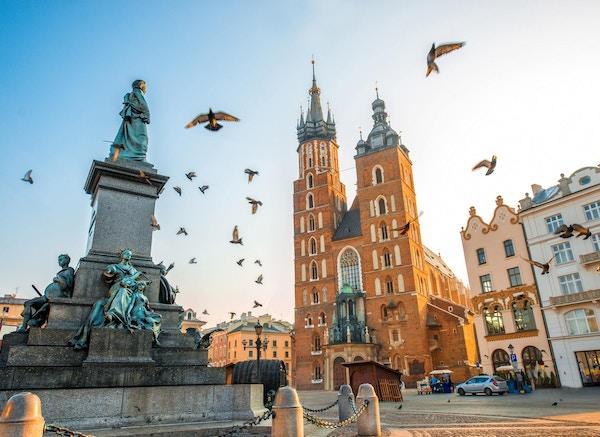 Gammel utsikt over sentrum med Adam Mickiewicz monument, St. Marys basilika og fugler som flyr i Krakow om morgenen