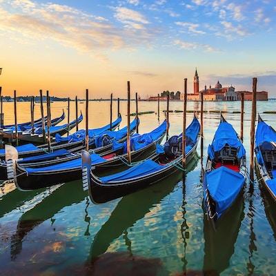 Venezia med kjente gondoler ved soloppgang, Italia