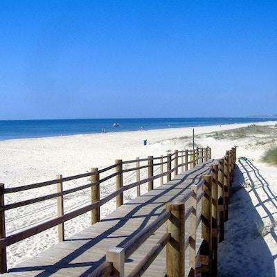 Yellow praia de monte gordo beach 01