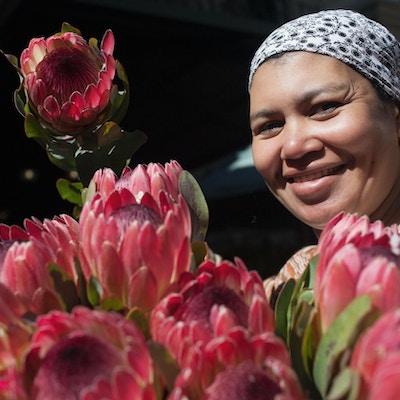 Kvinne i Cape Town som selger protea, Sør-Afrikas nasjonalblomst.