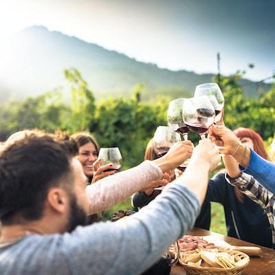 Venner som skåler med rødvin etter innhøstingen