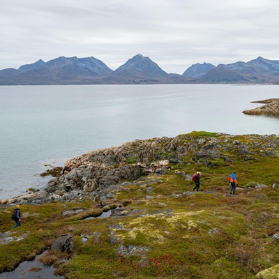 Mennesker på tur langs fjorden.