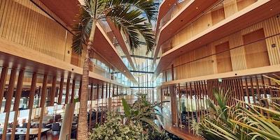 Arkitektur, bygning, palmer