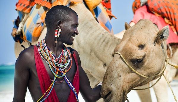 Masai og kamel på strand i Kenya.