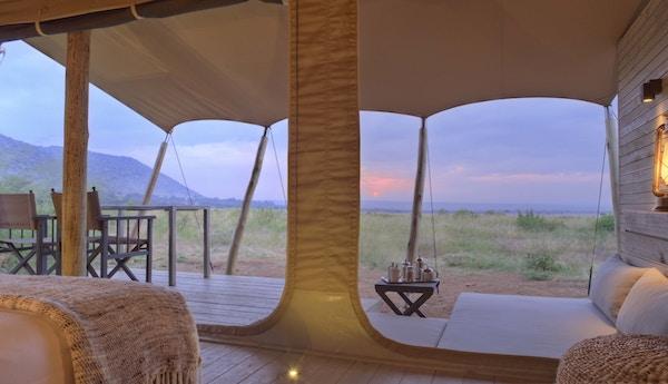 Kichwa Tembo Masai Mara i Kenya