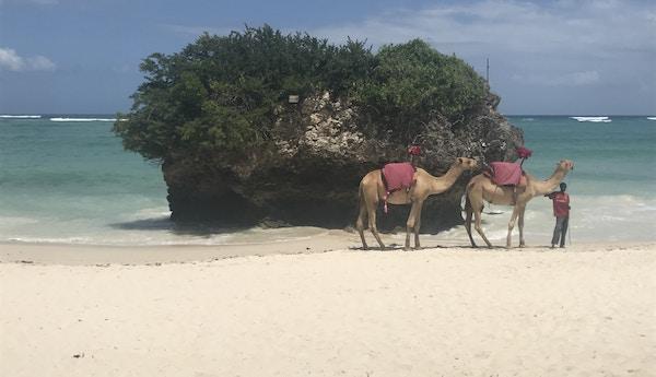Diani Beach, Kenya.