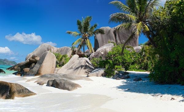Strand på Seychellene.