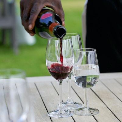 I Stock 518563806 1920x1428 sor afrika vin