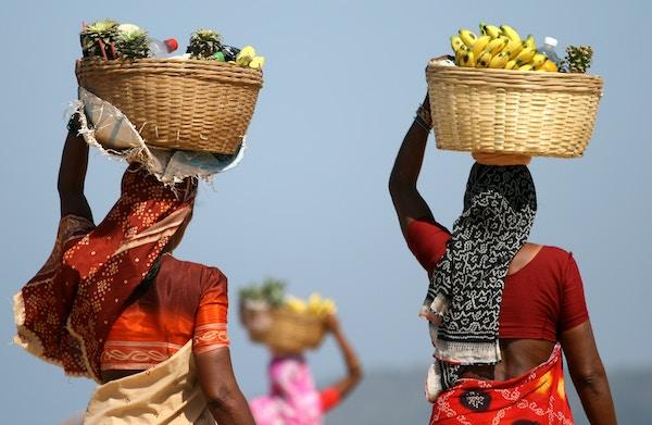 Kvinner bærer frukt, India.