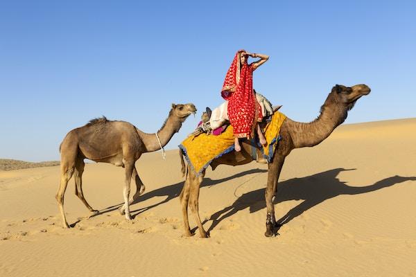 Kvinne på kamel i India.