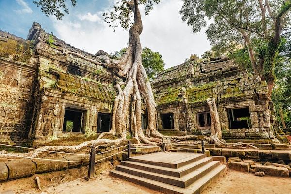 Ta Prohm i Kambodsja.