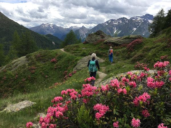 To damer på vandring i alpene.