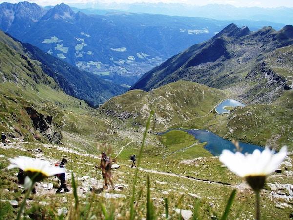 Turister på fottur i alpene.