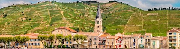 Rhonedalen i Frankrike. By i forgrunnen.