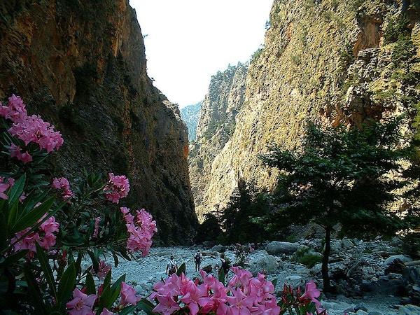 Samaria-ravinen på Kreta.