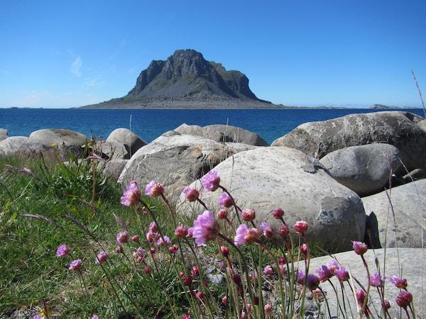 Landskapsbilde av Vega på Helgeland