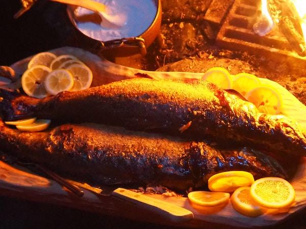 Grillet fisk på Finnmarksvidda.