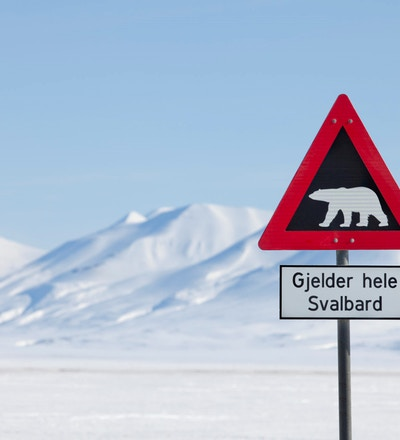 Svalbard Isbjornskilt