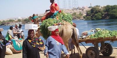 folkeliv i Aswan
