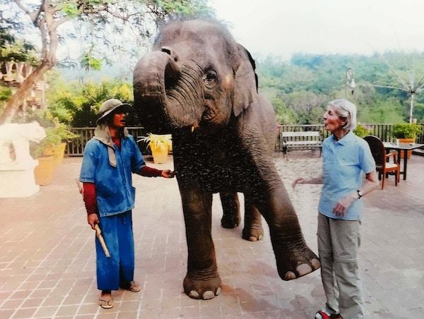Den lille elefanten står på tre ben