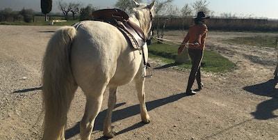 Cowboyens kone Stephanie er minst like hestevant som sin mann.