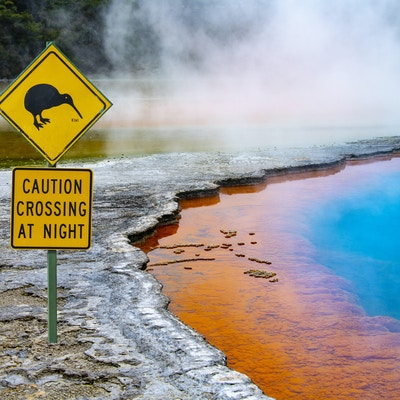 Champagne pool NZ